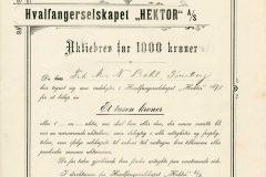175_Hektor-Hvalfangerselskapet_1910_1000_nr225