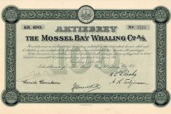 177_The-Mossel-Bay-Whaling-Co._1912_100_nr3524