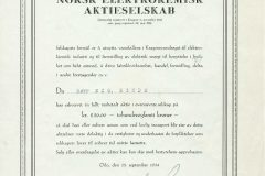 188_Norsk-Elektrokemisk-Aktieselskab_1934_250_nr3
