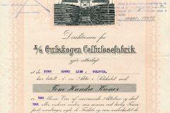 301_Gulskogen-Cellulosefabrik_1922_500_nr1642
