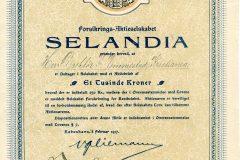 316_Selandia-forsikrings_1917_1000_nr427