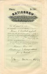 191_Hardanger-Elektriske-Jern-og-Staalverk_1912_250_2561-