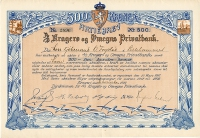 050_Kragero-og-Omegns-Privatbank_1917_500_nr2896