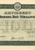 108-HVA_The Mossel Bay Whaling Co._1912_100_nr525