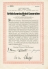 111-IND_British American Nickel Corporation_1919_1000$_nr3076
